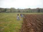 Wendy Sue's kids help plant potatoes